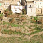Orti Saraceni - terrazzamenti - Tricarico
