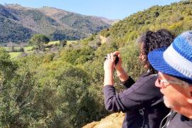 Escursione bio a Tricarico (MT) - Mantenera trekking