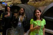 happy wine altamura