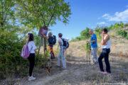 Escursione tra le dolomiti lucane da Castelmezzano sosta