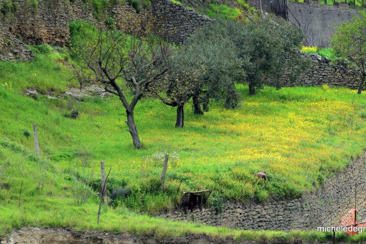 Terrazzamento negli orti Saraceni di Tricarico durante la visita guidata
