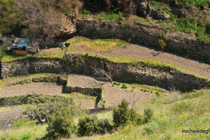 Gli orti Saraceni di Tricarico visti dall'alto - visita guidata